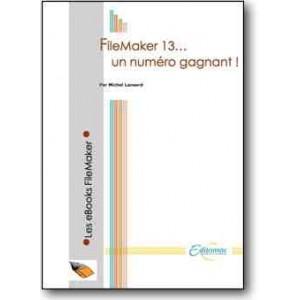 FileMaker 13, un numéro gagnant